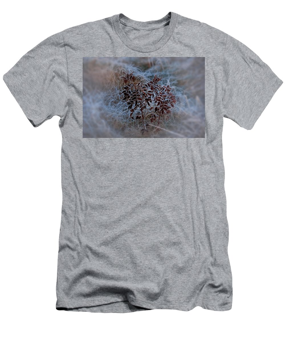 Natural Abstract Men's T-Shirt (Athletic Fit) featuring the photograph Frosted Rugosa by Susan Capuano