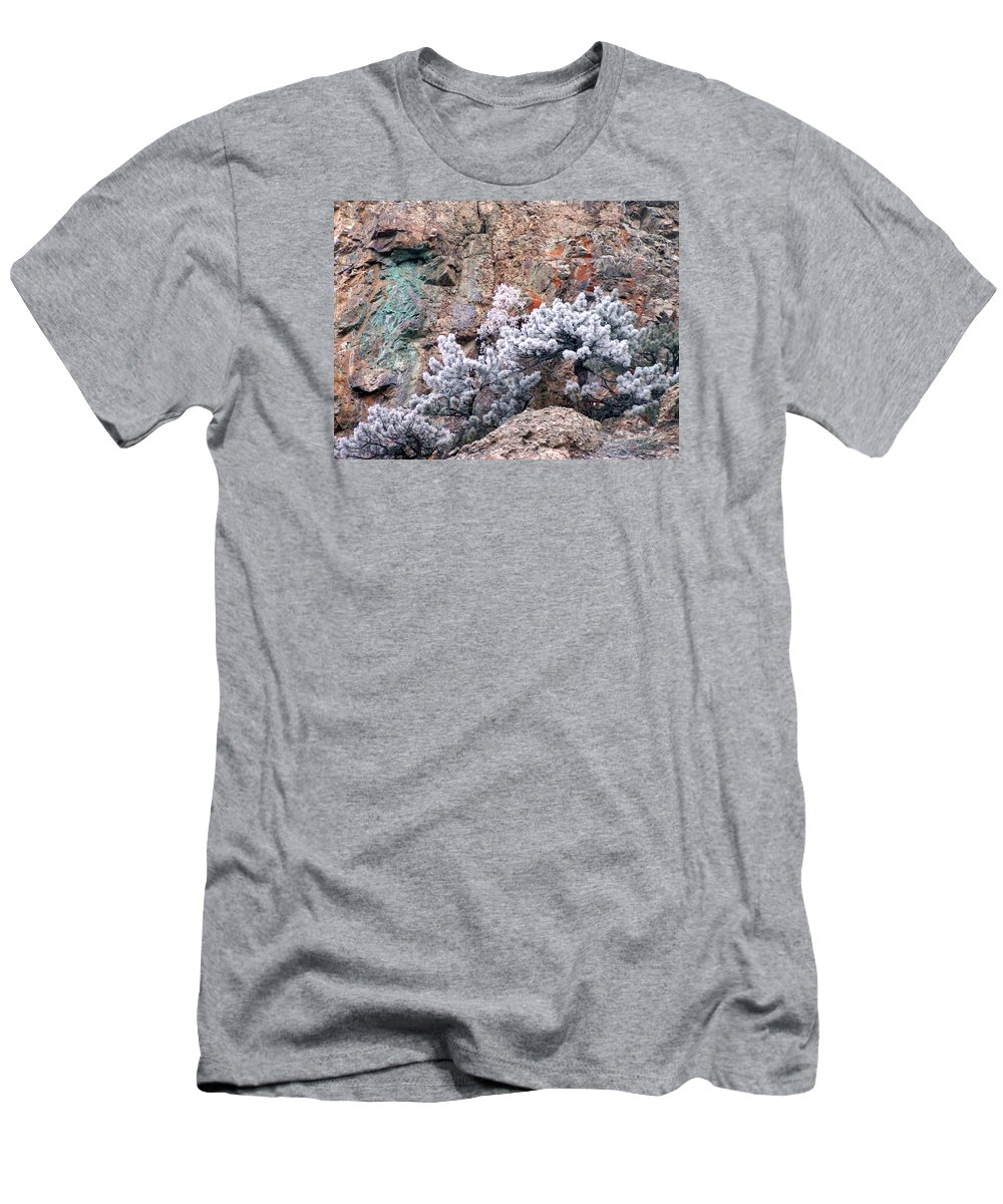Cooper Rock Tree Frost Boulder Colorado Rock Mountains Winter Colorful Rocks T-Shirt featuring the photograph Frosted trees by George Tuffy