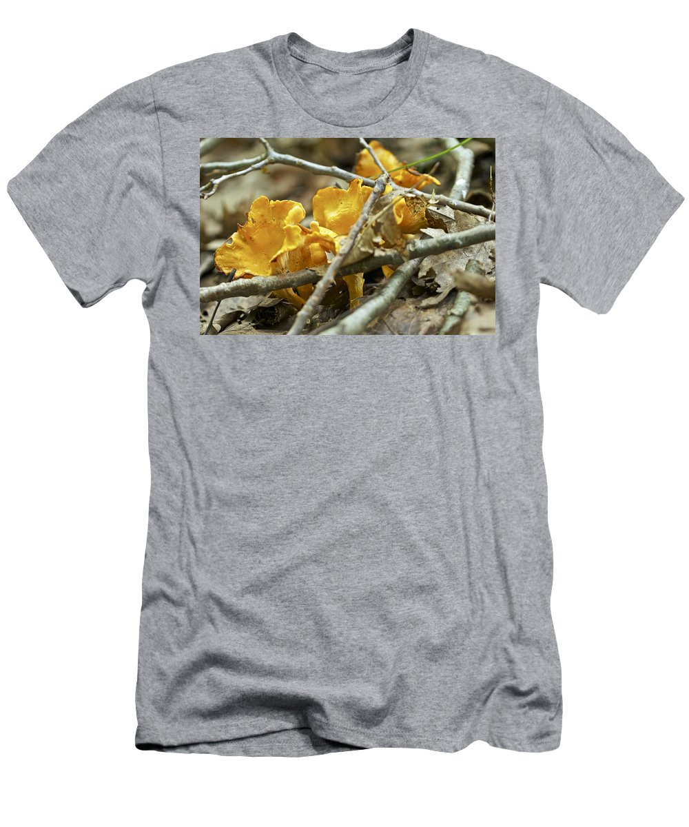 Mushroom Men's T-Shirt (Athletic Fit) featuring the photograph Golden Chanterelle - Cantharellus Cibarius by Mother Nature