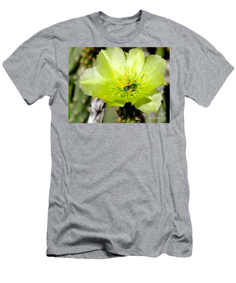 Cactus Bloom Men's T-Shirt (Athletic Fit) featuring the photograph Green Cholla Beauty by Marilyn Smith