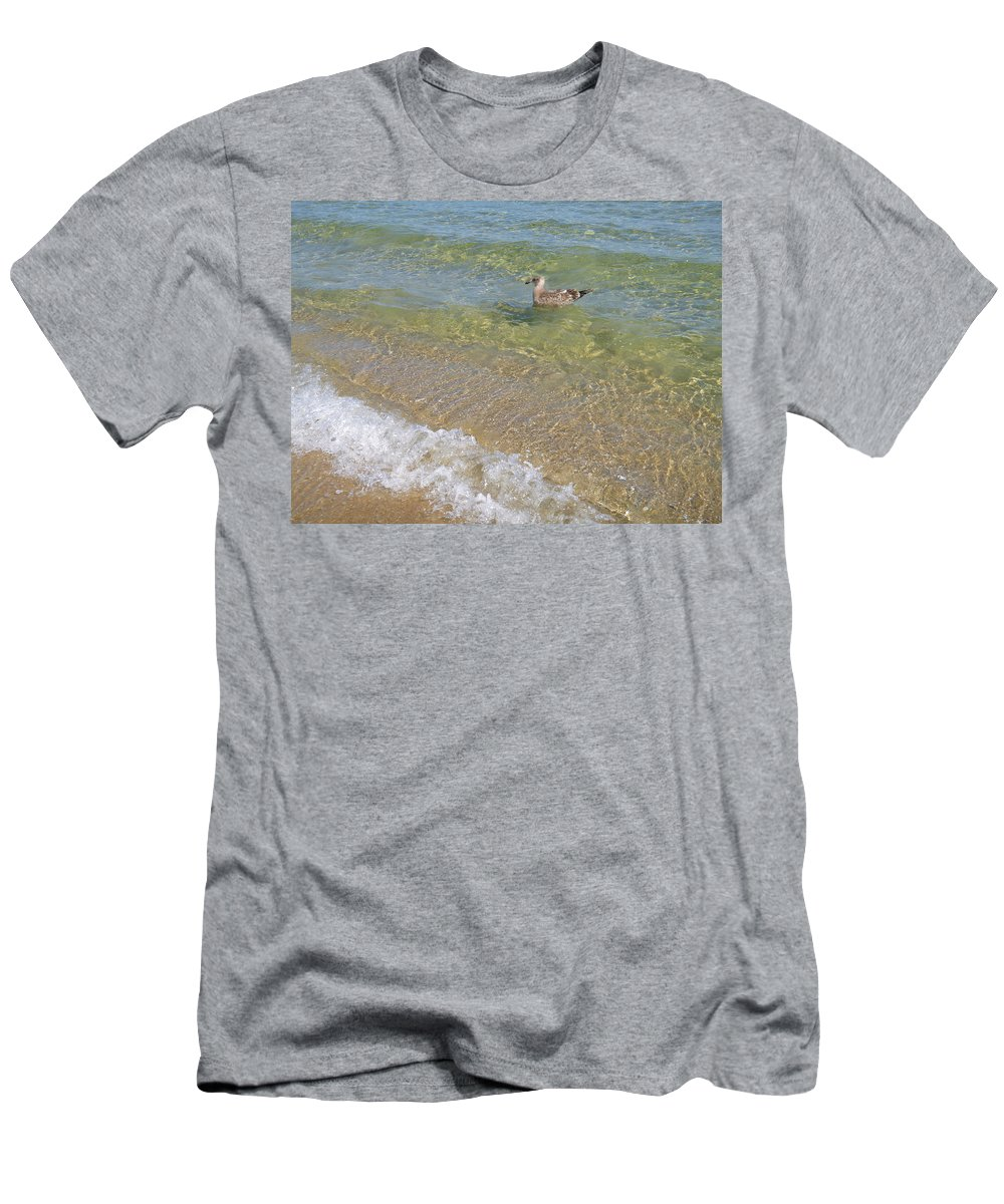 Seagull Men's T-Shirt (Athletic Fit) featuring the photograph Gull Floating by Ellen Paull