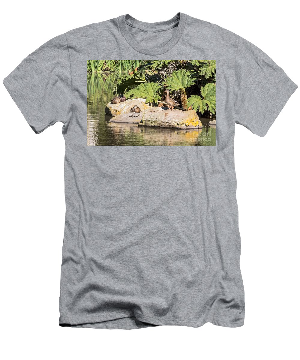 Anas Platyrhynchos Men's T-Shirt (Athletic Fit) featuring the photograph Hanging Out by Kate Brown