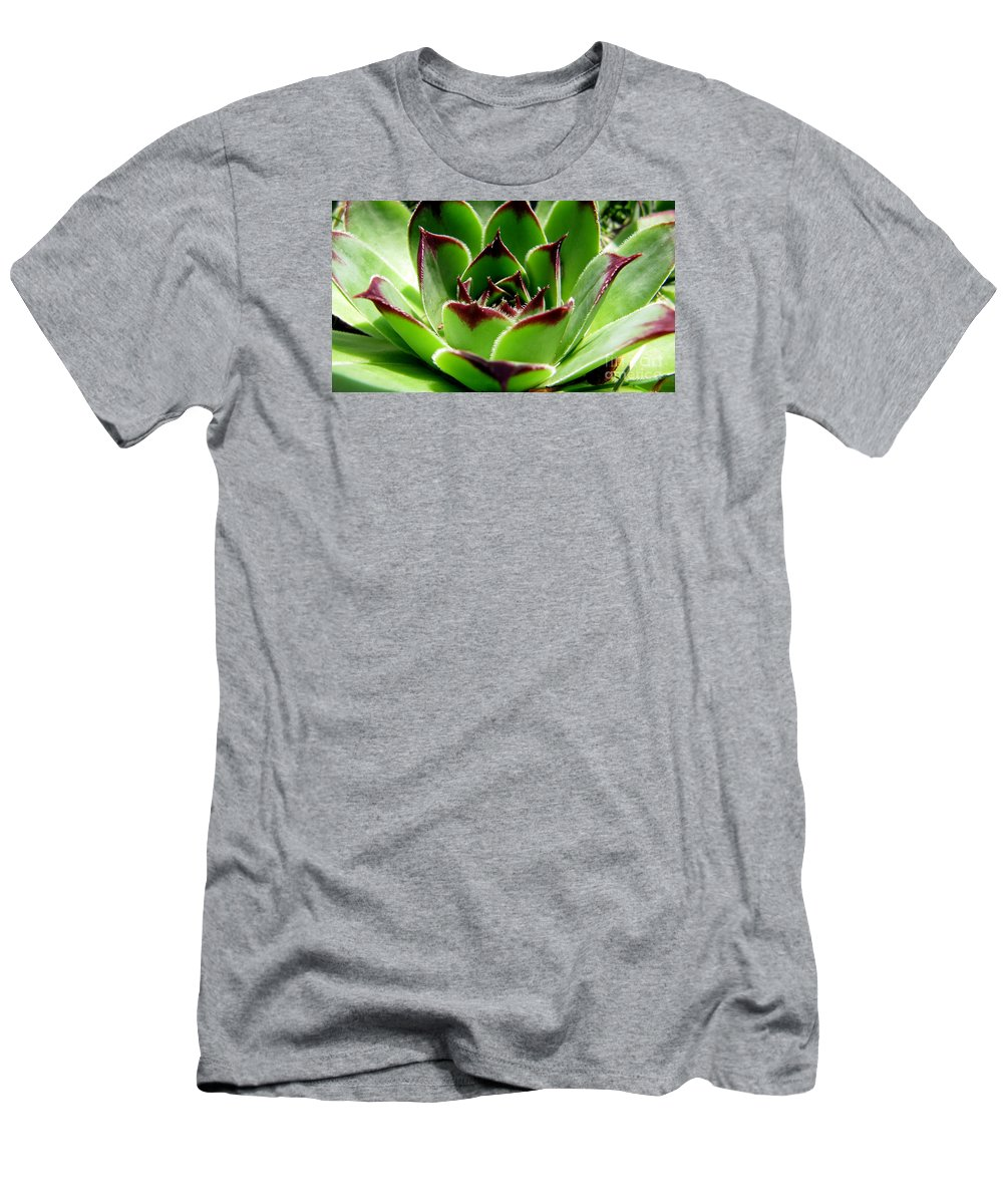 Plants Men's T-Shirt (Athletic Fit) featuring the photograph Hen And Chicks by Jaunine Roberts