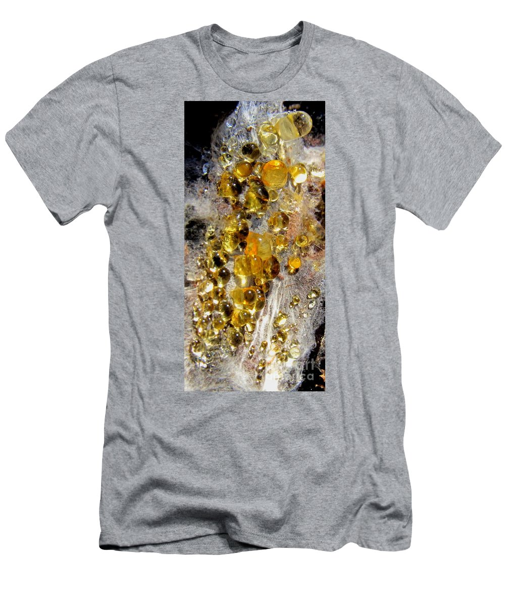 Gold Fungi Gold Fungus Honey Fungus Honey Fungi North American Fungi Mid Atlantic Mushrooms Seasonal Forest Flora Seasonal Forest Fungi Preserve Biodiversity Natural Design Maryland Mycology Men's T-Shirt (Athletic Fit) featuring the photograph Honey Fungus by Joshua Bales