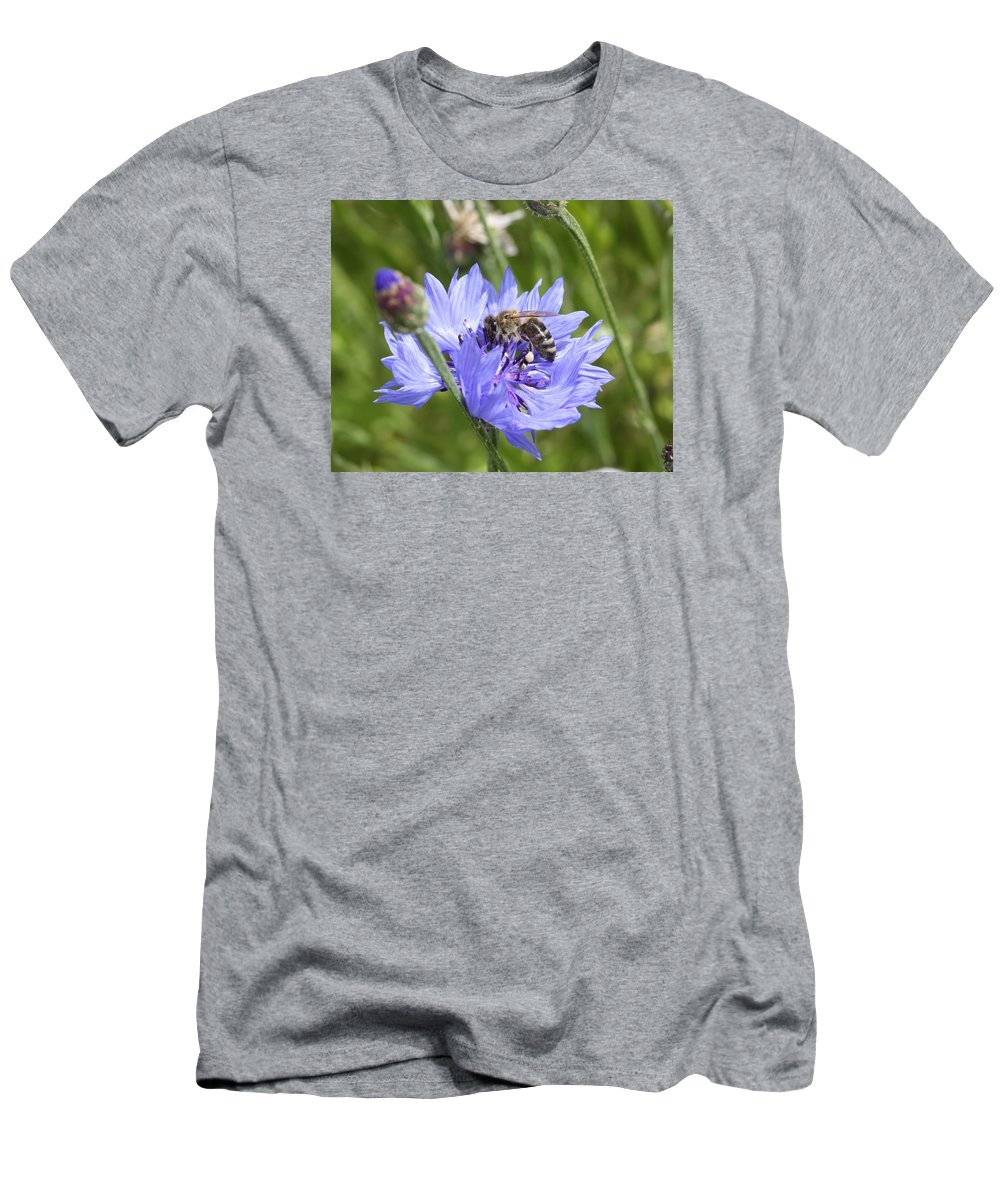 Honeybee Men's T-Shirt (Athletic Fit) featuring the photograph Honeybee In Bachelor's Button by Lucinda V VanVleck