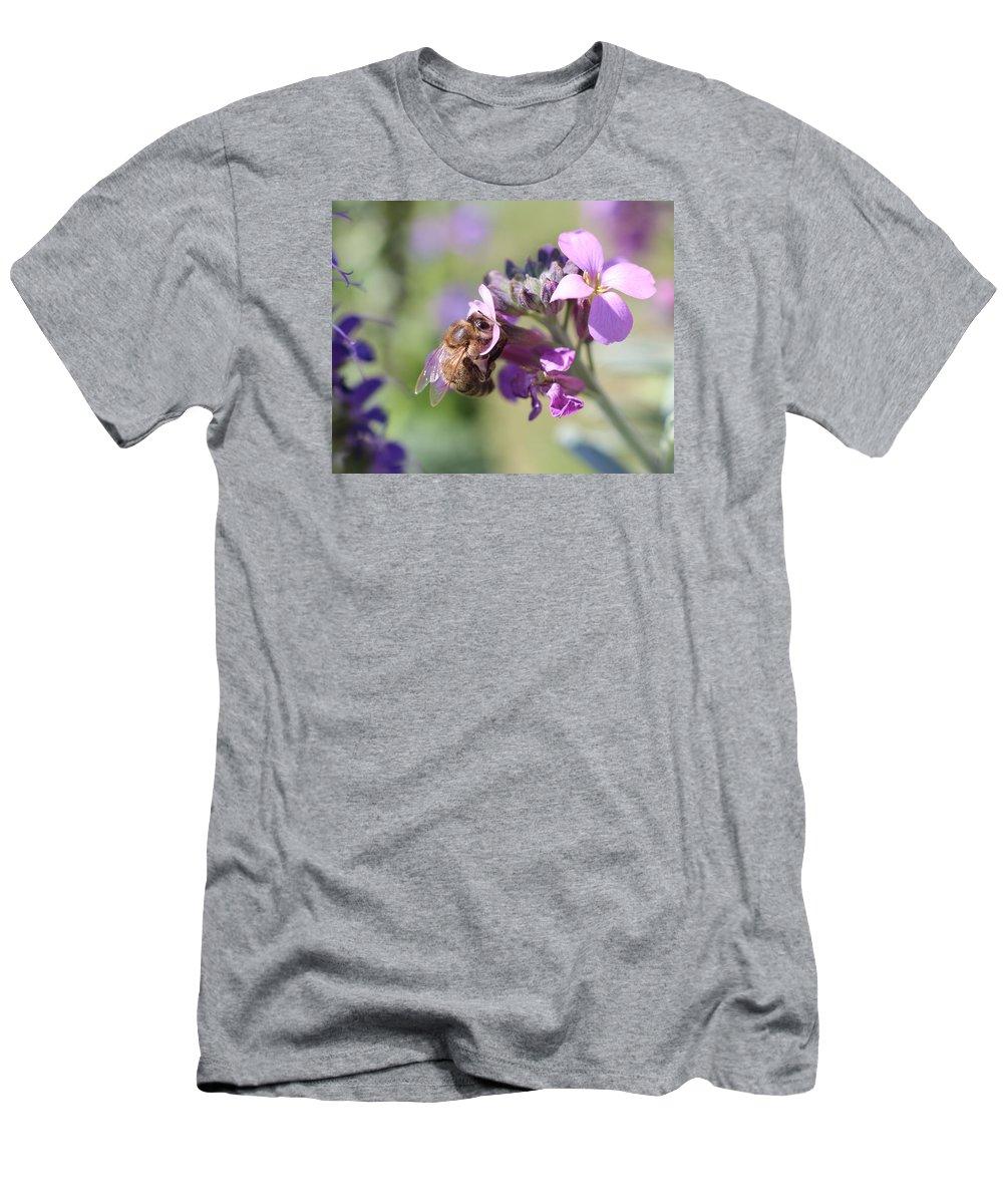 Honeybee Men's T-Shirt (Athletic Fit) featuring the photograph Honeybee On Purple Wall Flower by Lucinda VanVleck