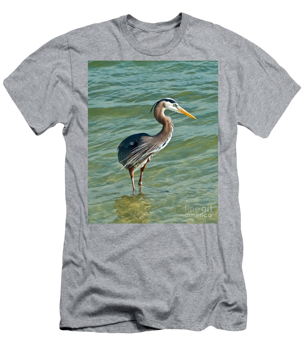Great Heron Men's T-Shirt (Athletic Fit) featuring the photograph Honeymoon Island Heron by Stephen Whalen