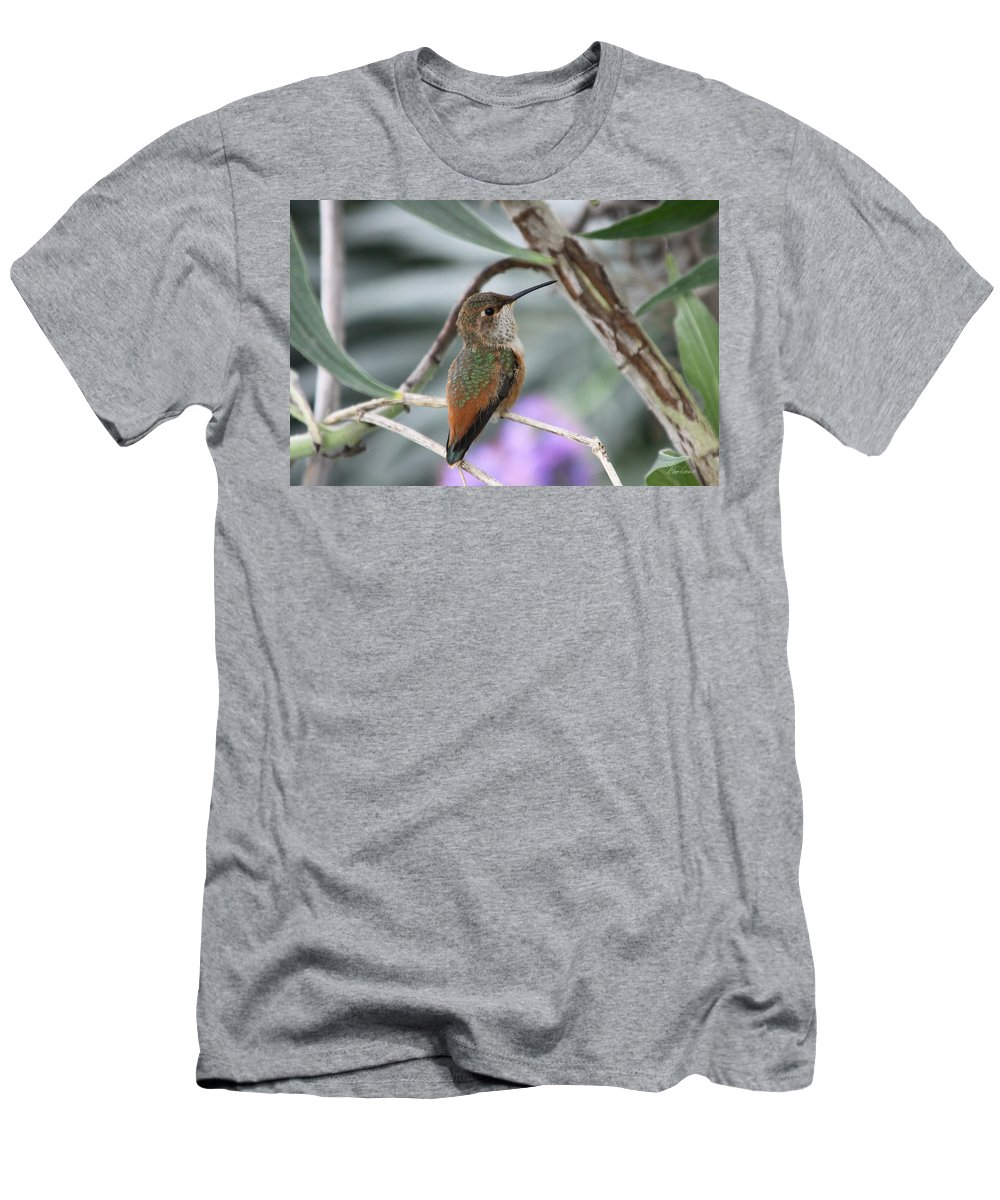 Hummingbird Men's T-Shirt (Athletic Fit) featuring the photograph Hummingbird On A Branch by Diana Haronis