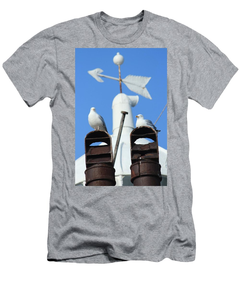 Seagulls Men's T-Shirt (Athletic Fit) featuring the photograph If We Only Had A Sign by Robert Phelan