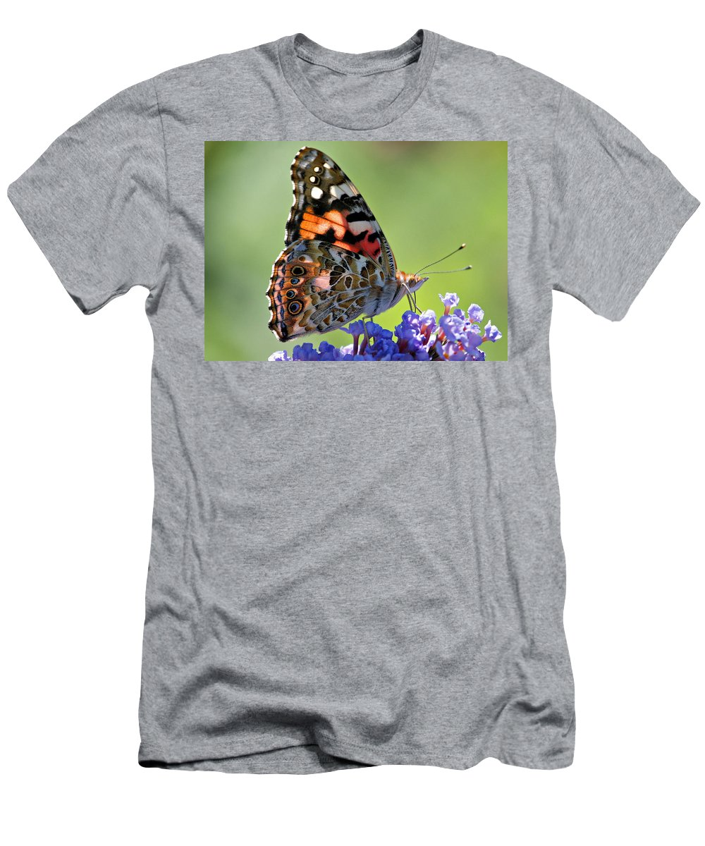 Butterfly Men's T-Shirt (Athletic Fit) featuring the photograph In The Sunlight by Sandy Keeton
