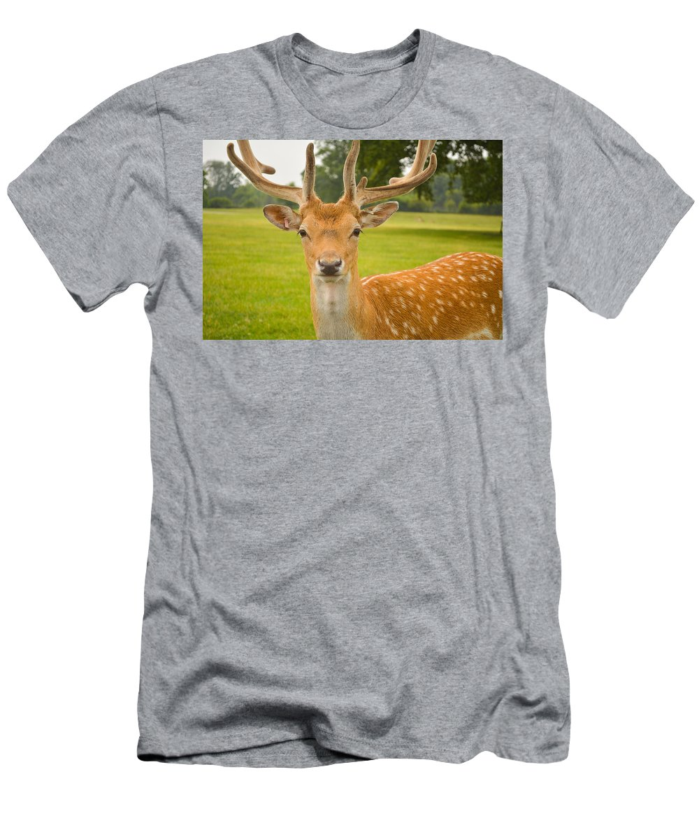 Deer Men's T-Shirt (Athletic Fit) featuring the photograph King Of The Spotted Deers by Mair Hunt
