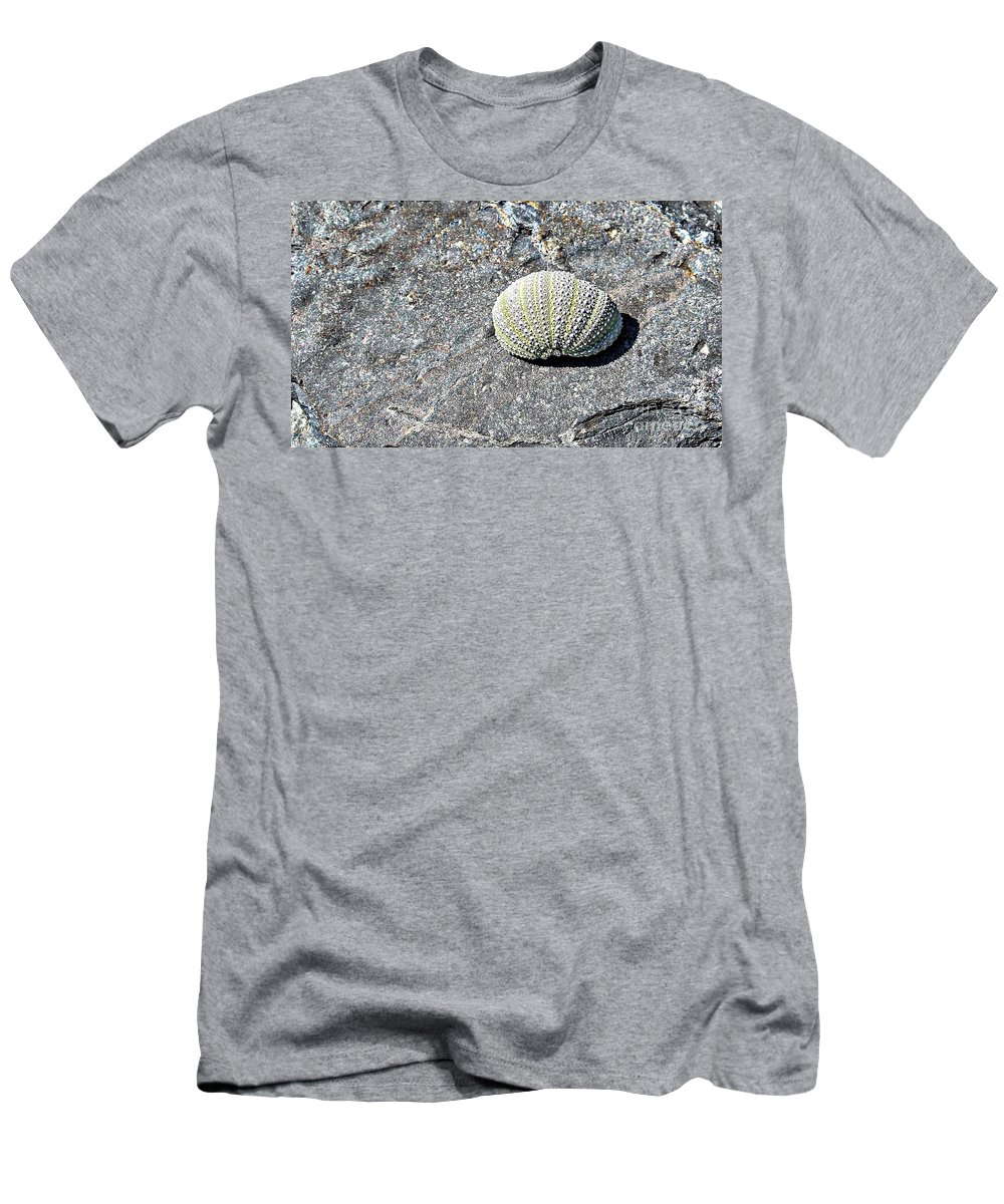 Lacy Shell On A Beachrock Men's T-Shirt (Athletic Fit) featuring the photograph Lacy Shell On A Beachrock by Barbara Griffin