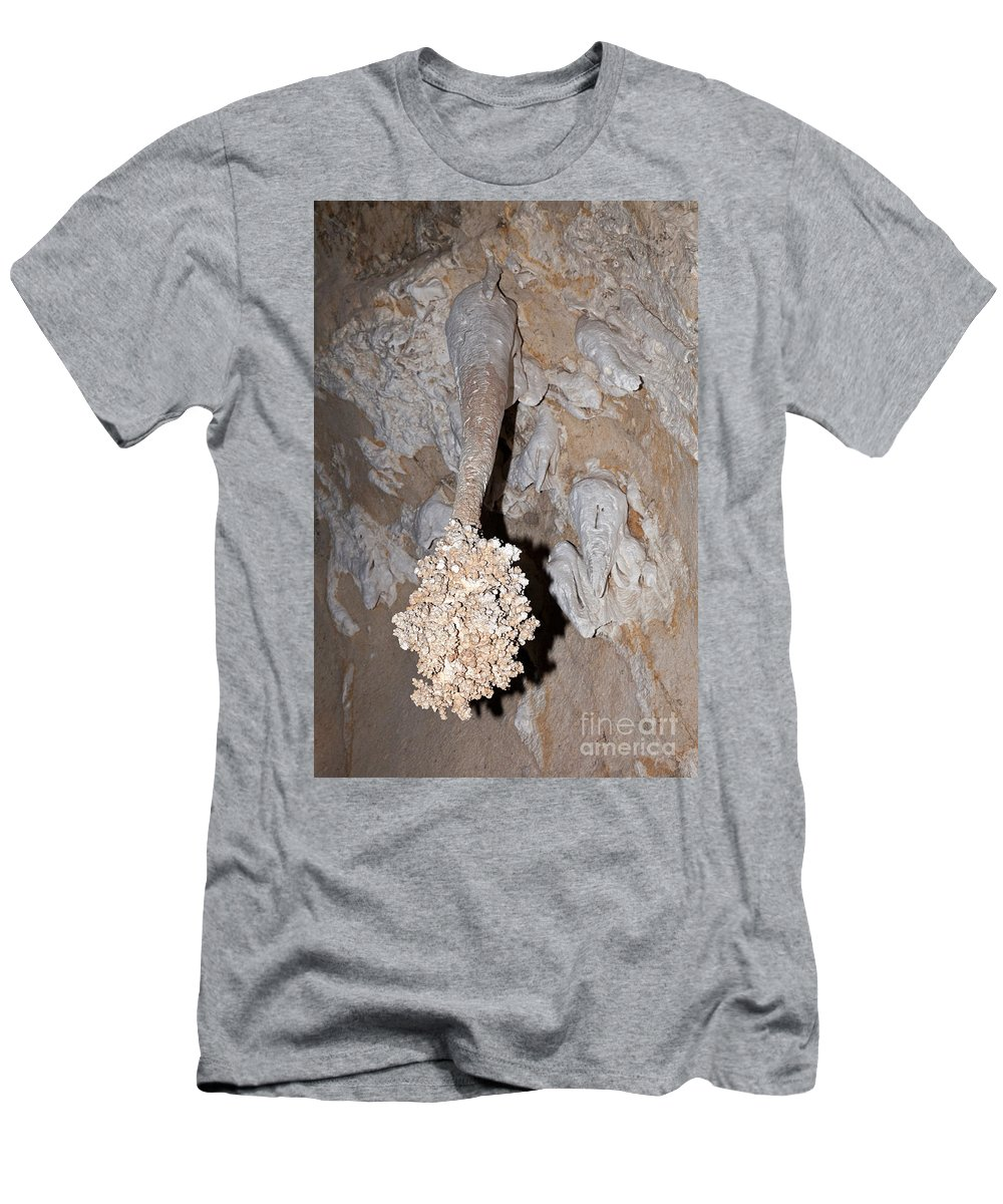 Carlsbad Men's T-Shirt (Athletic Fit) featuring the photograph Lions Tail Carlsbad Caverns National Park by Fred Stearns