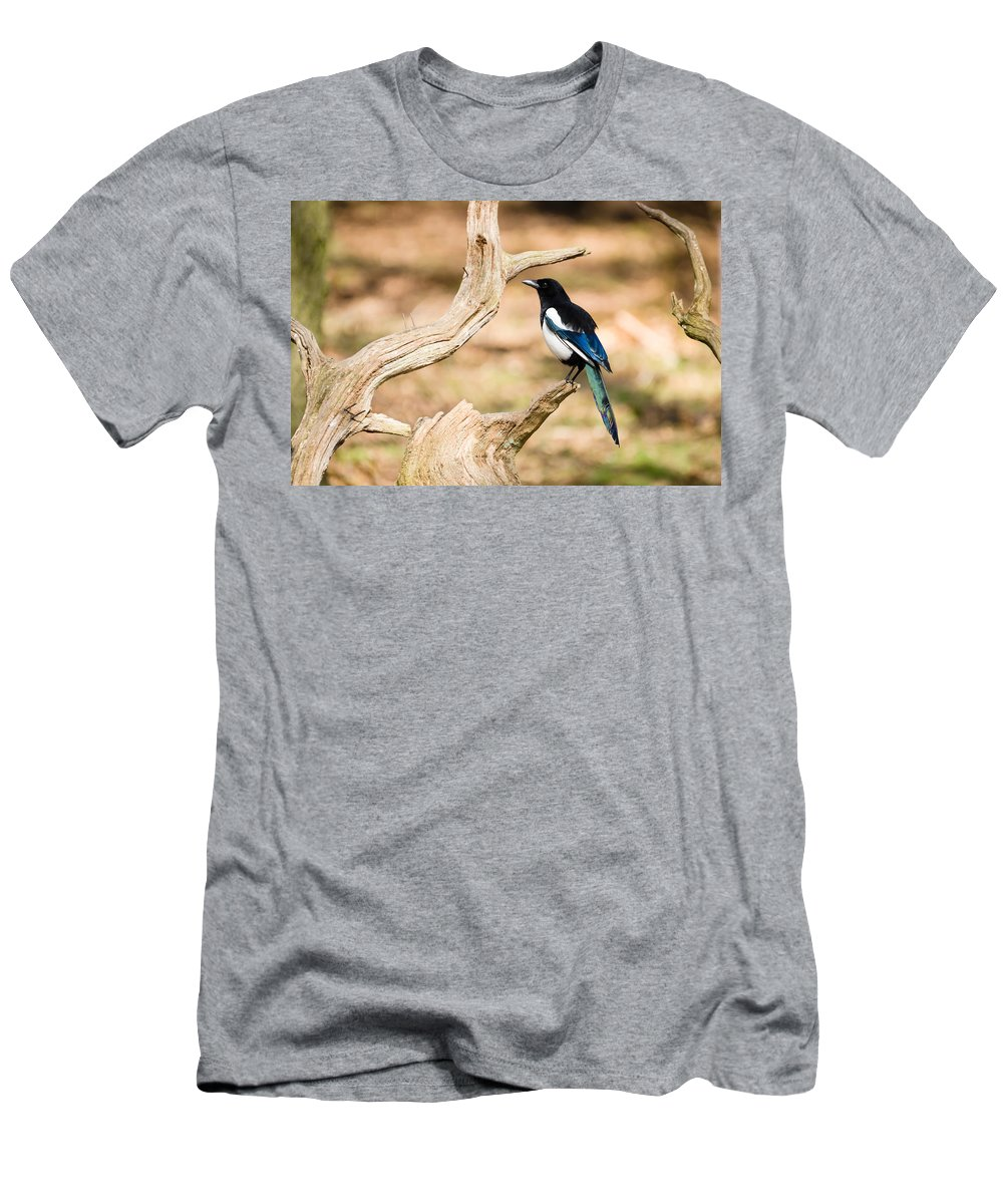 Animal Men's T-Shirt (Athletic Fit) featuring the photograph Magpie by David Head