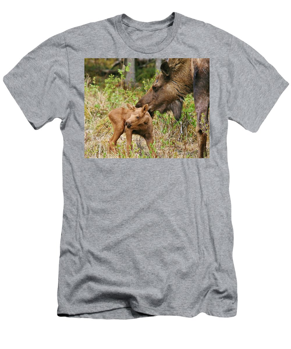 Moose Men's T-Shirt (Athletic Fit) featuring the photograph Mama Loves Me by Karen Jones