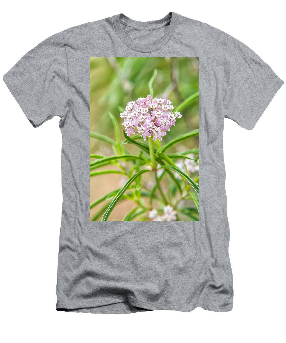 A. Fascicularis Men's T-Shirt (Athletic Fit) featuring the photograph Narrowleaf Milkweed by Rich Leighton