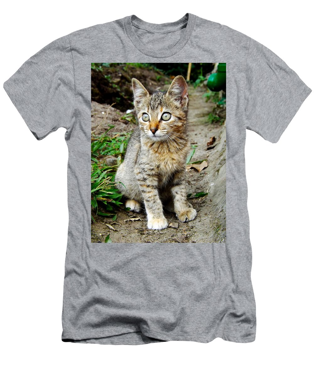 Cat Men's T-Shirt (Athletic Fit) featuring the photograph Natasha by Ana Cardenas