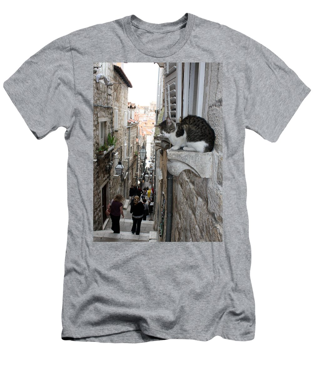 Old Town Men's T-Shirt (Athletic Fit) featuring the photograph Old Town Alley Cat by David Nicholls