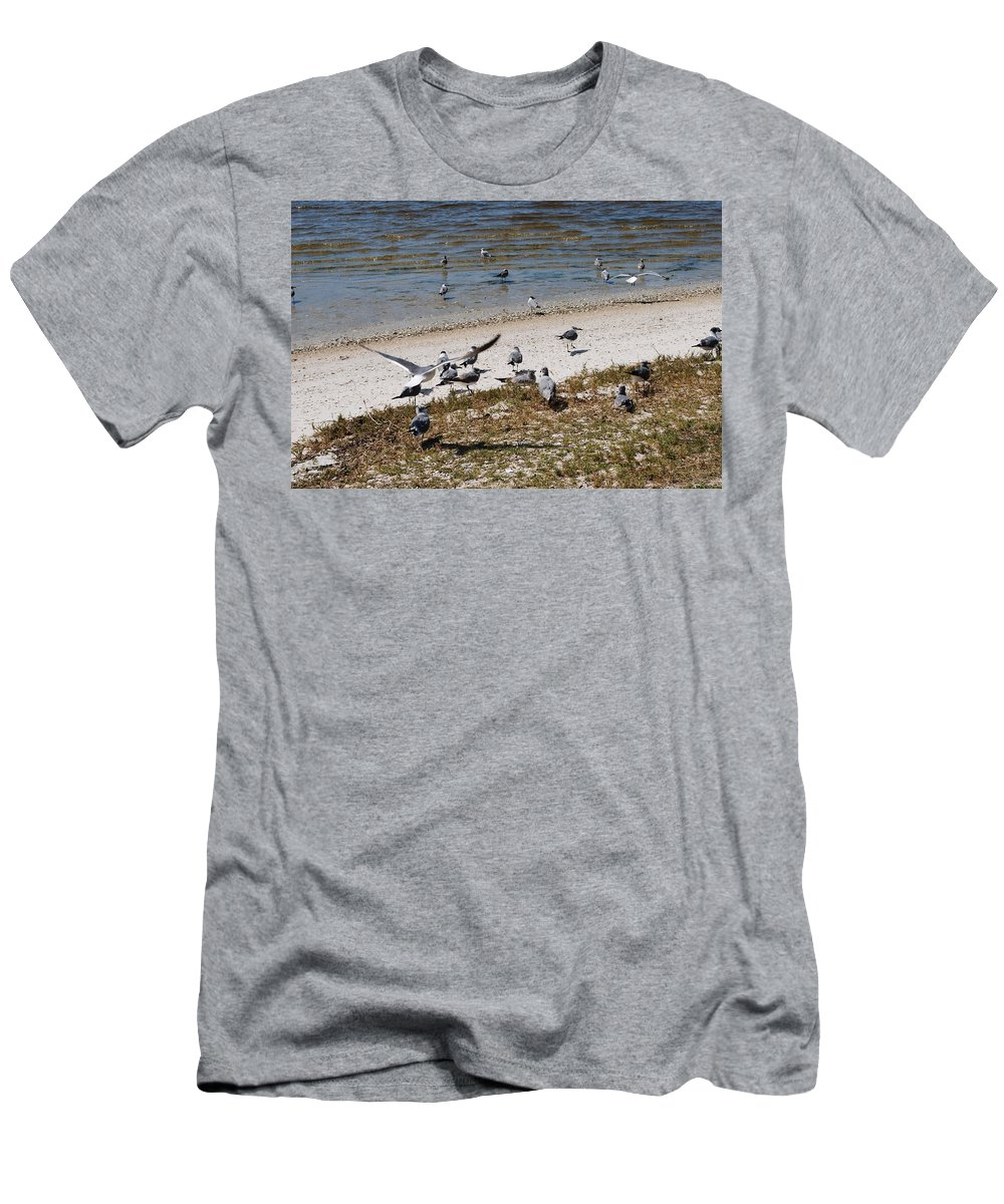 Seagull Gathering Men's T-Shirt (Athletic Fit) featuring the photograph On The Beach by Robert Floyd