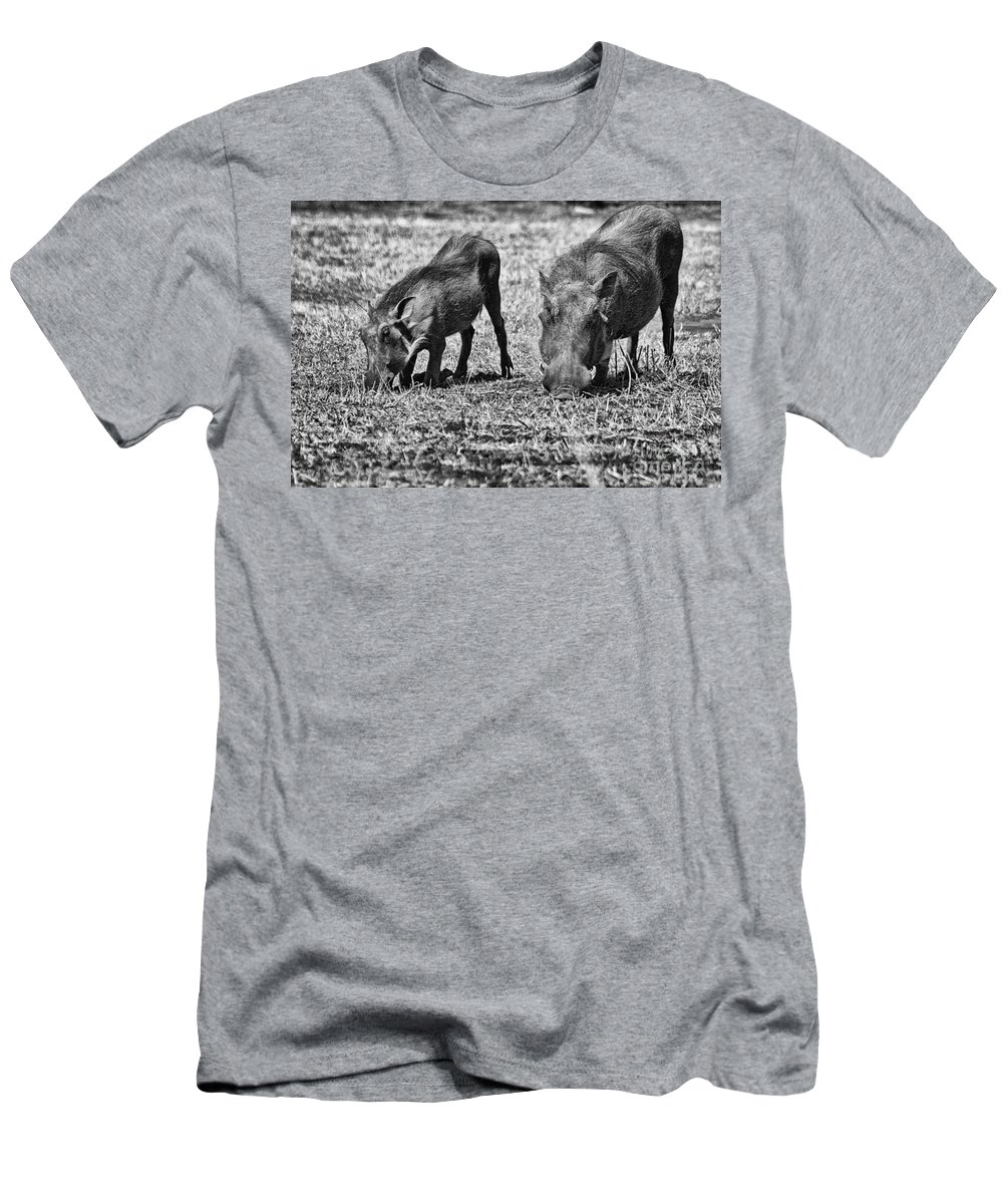 Warthog Men's T-Shirt (Athletic Fit) featuring the photograph On The Knees by Douglas Barnard