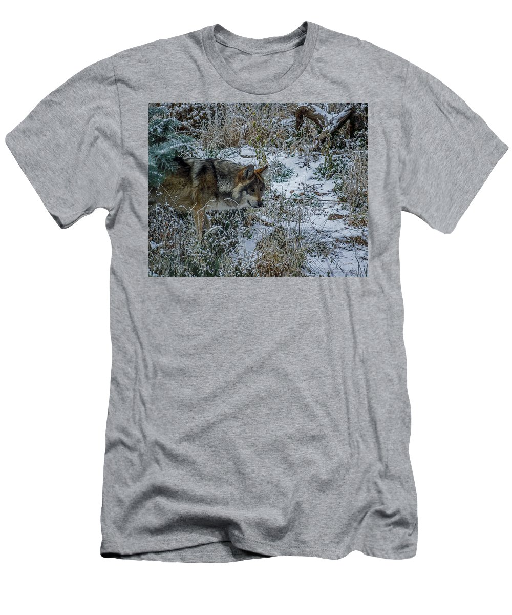 Wolf Men's T-Shirt (Athletic Fit) featuring the photograph On The Move by Ernie Echols
