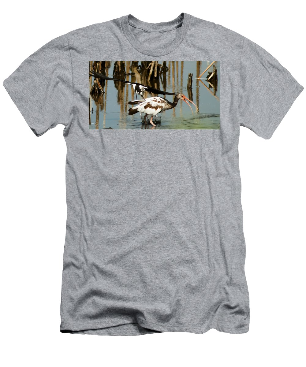 Black-necked Stilt Men's T-Shirt (Athletic Fit) featuring the photograph Ouch by Norman Johnson