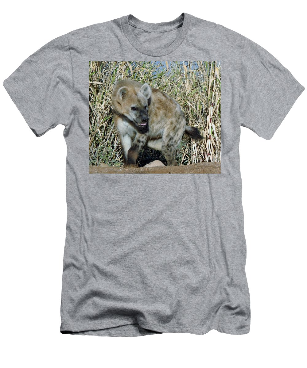Out Of Africa Men's T-Shirt (Athletic Fit) featuring the photograph Out Of Africa Hyena 2 by Phyllis Spoor
