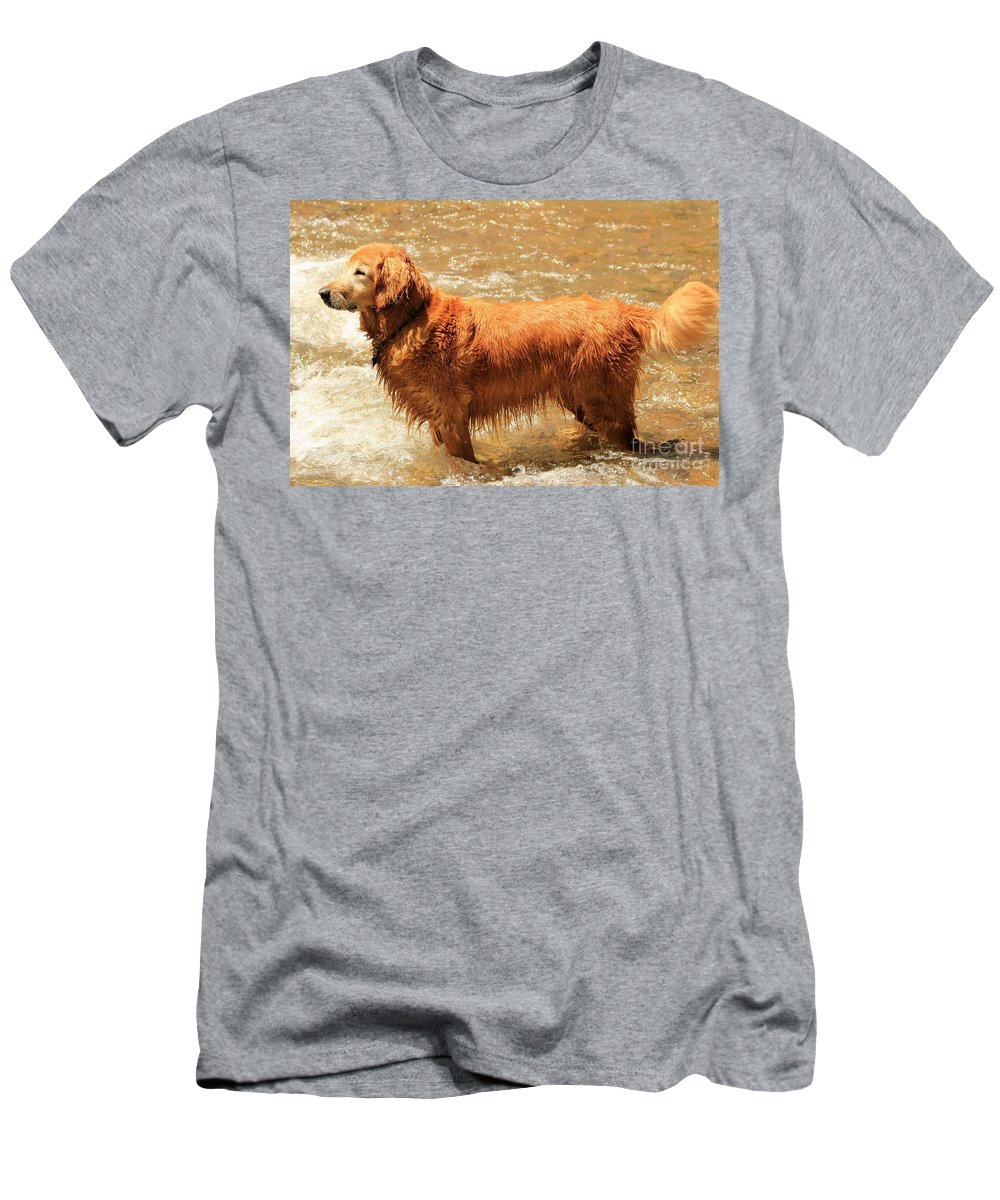 Golden Retriever Men's T-Shirt (Athletic Fit) featuring the photograph Play Time by Fiona Kennard