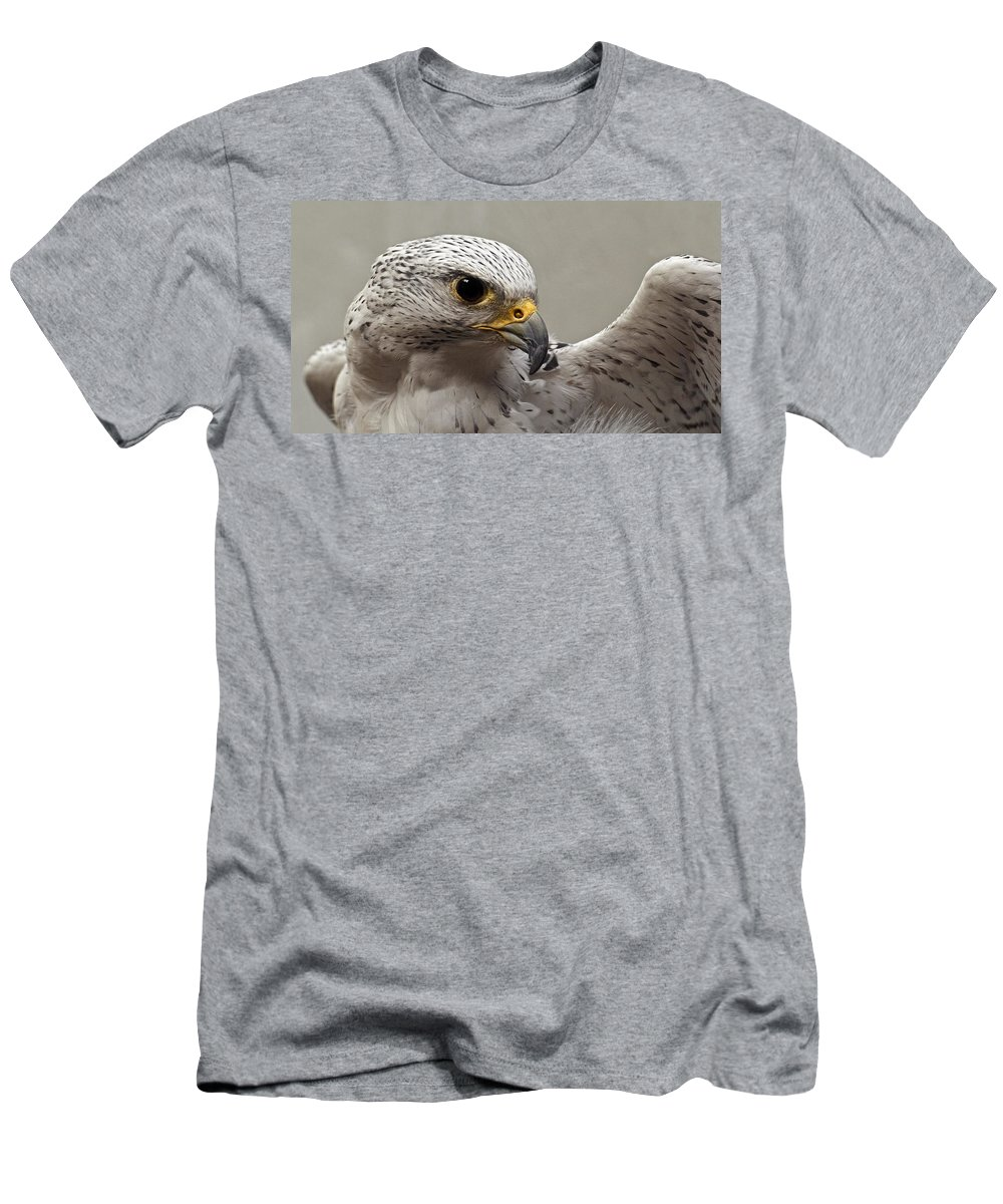 Point Defiance Gryfalcon Men's T-Shirt (Athletic Fit) featuring the photograph Point Defiance Gryfalcon by Wes and Dotty Weber