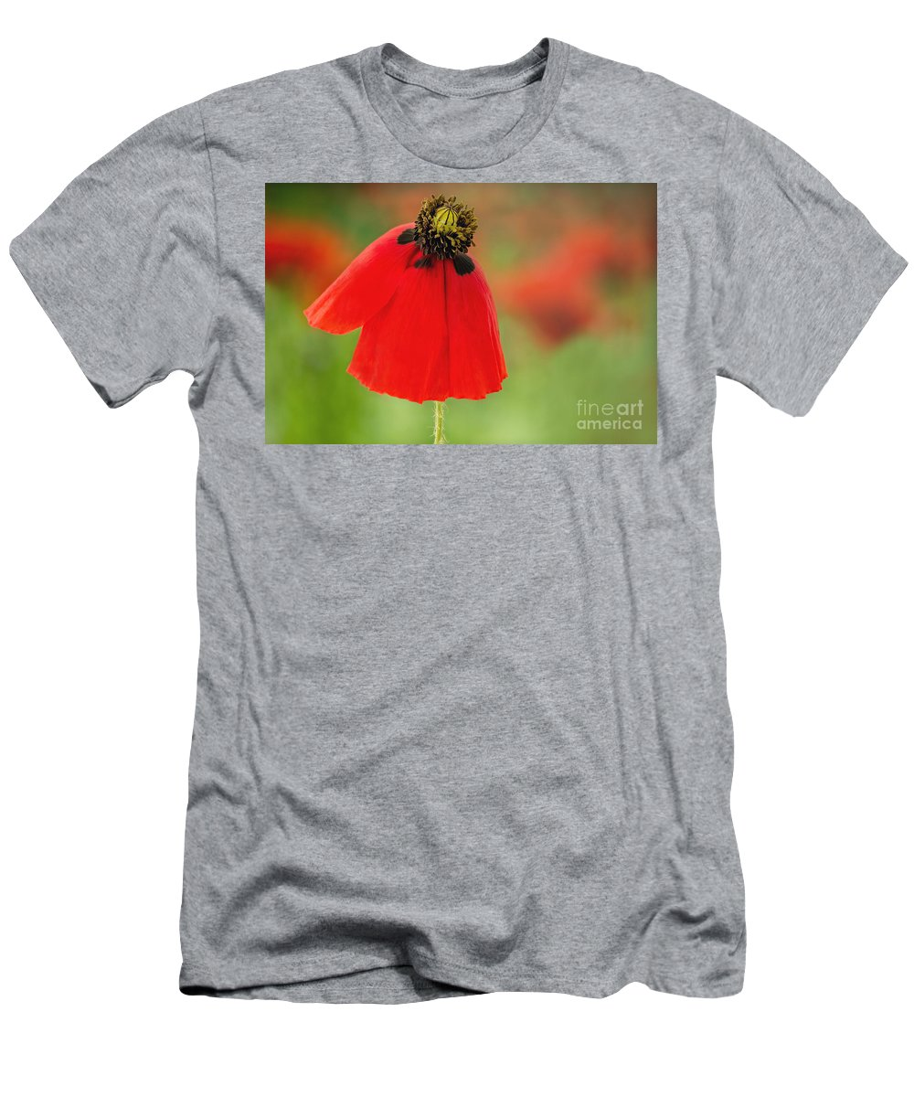 Poppy Men's T-Shirt (Athletic Fit) featuring the photograph Poppy by Onelia PGPhotography