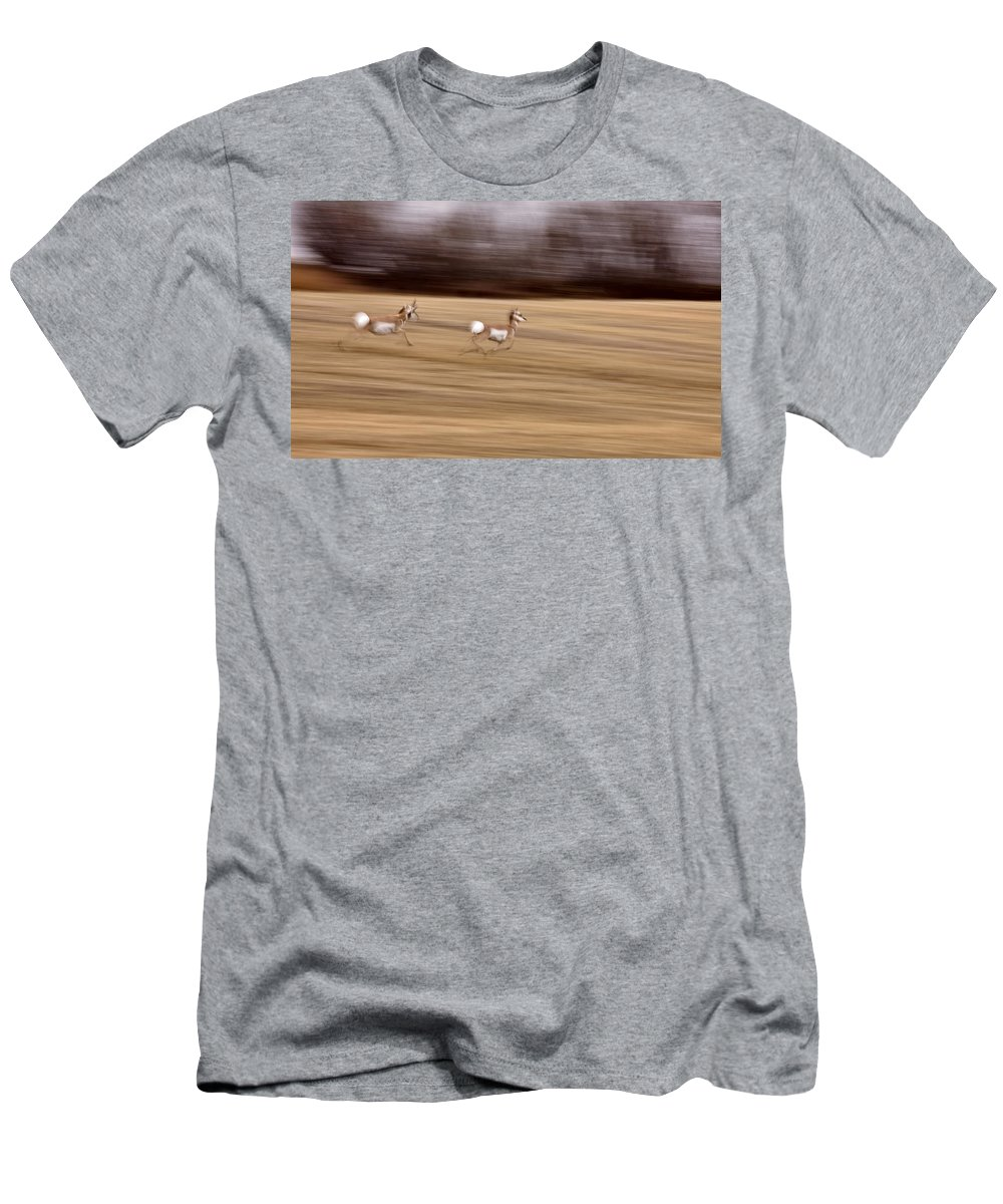 Antelope Men's T-Shirt (Athletic Fit) featuring the photograph Pronghorn Antelope by Mark Duffy