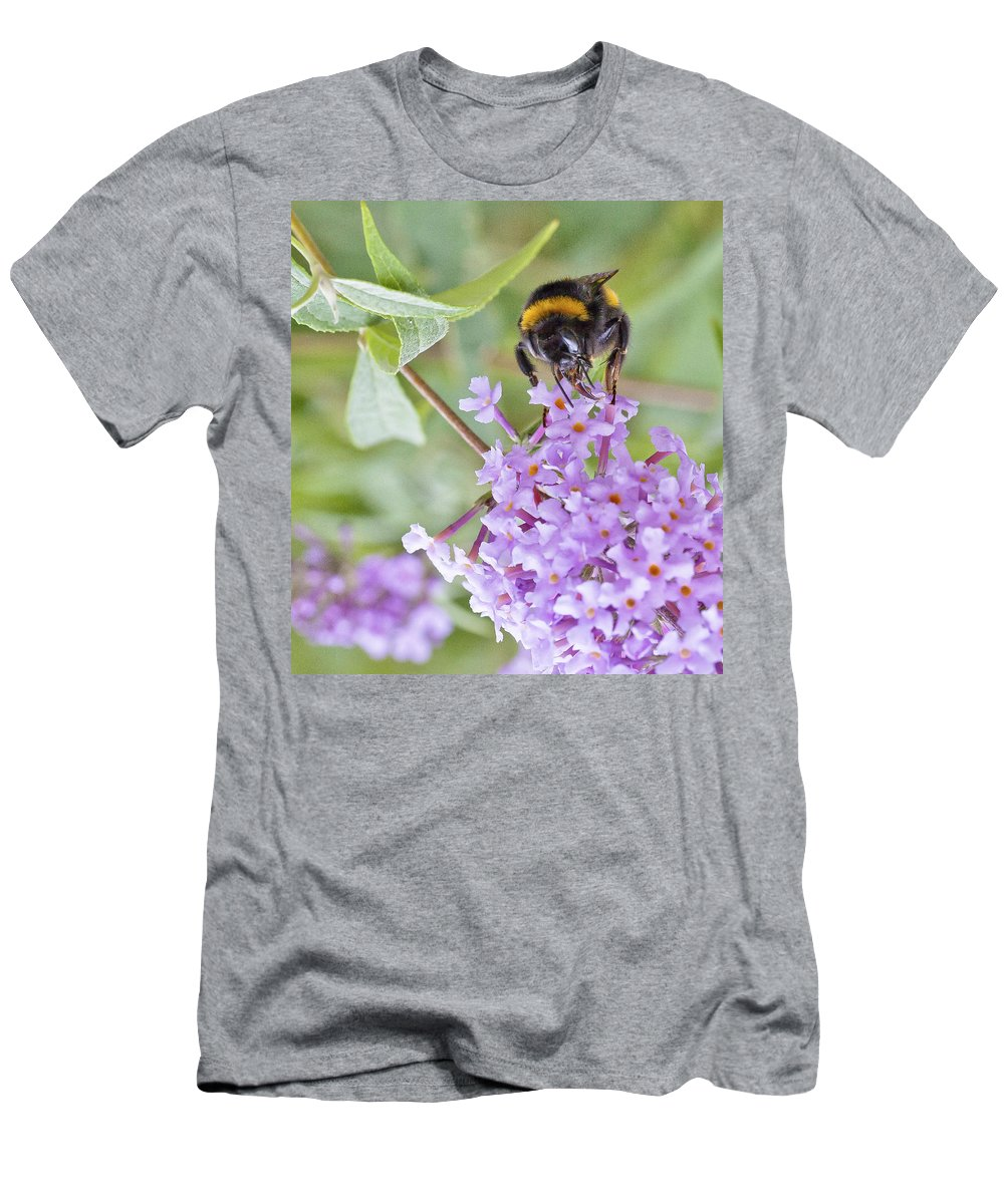 Bee Men's T-Shirt (Athletic Fit) featuring the photograph Reaching For Nectar by Maj Seda