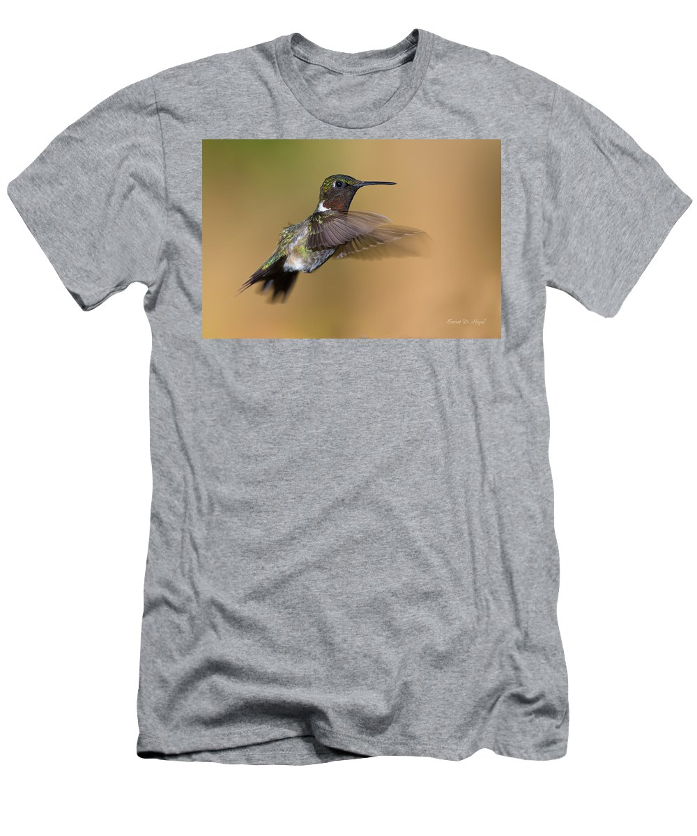 Hummingbird Men's T-Shirt (Athletic Fit) featuring the photograph Ruby-throated Hummingbird by Everet Regal