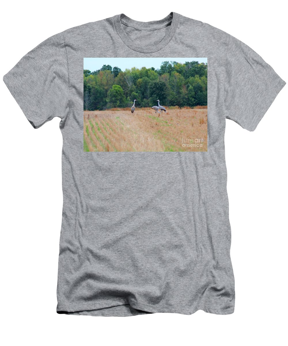 Sandhill Crane Men's T-Shirt (Athletic Fit) featuring the photograph Sandhill Crane by Stephanie Kripa