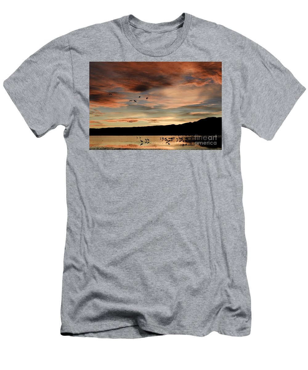 Grus Canadensis Men's T-Shirt (Athletic Fit) featuring the photograph Sandhill Cranes Roosting At Sunset by John Shaw