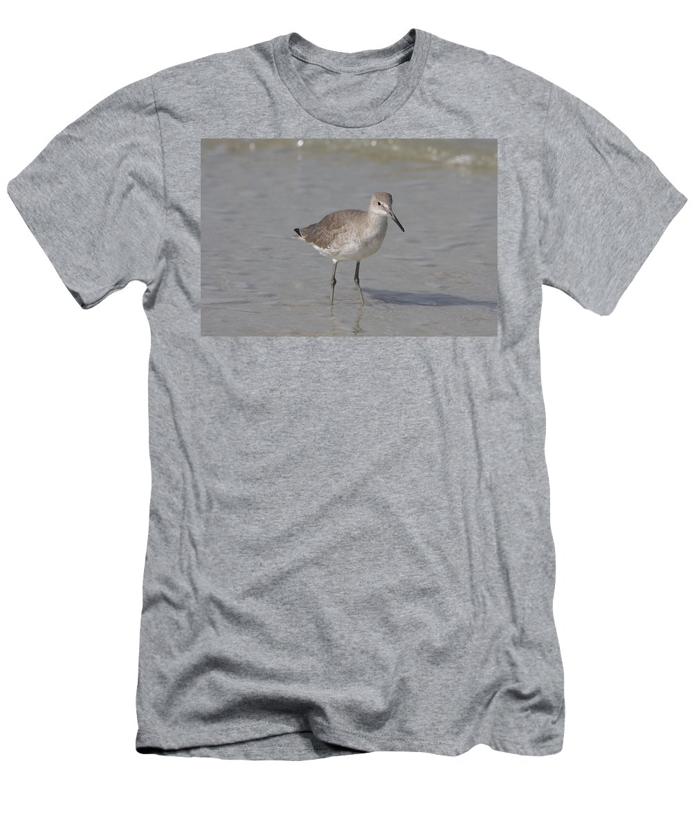Sandpiper Men's T-Shirt (Athletic Fit) featuring the photograph Sandpiper by Christiane Schulze Art And Photography
