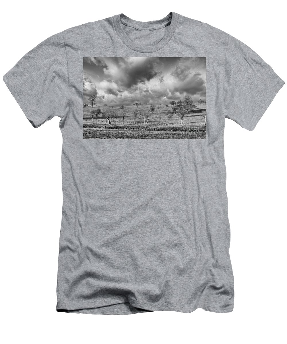 Fields Men's T-Shirt (Athletic Fit) featuring the photograph Scattered Trees by Brothers Beerens
