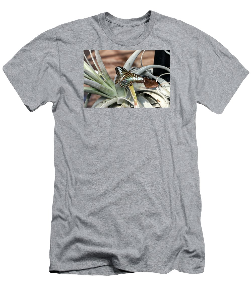 Butterfly Men's T-Shirt (Athletic Fit) featuring the photograph Sea Blue Butterfly Two by Shari Nees