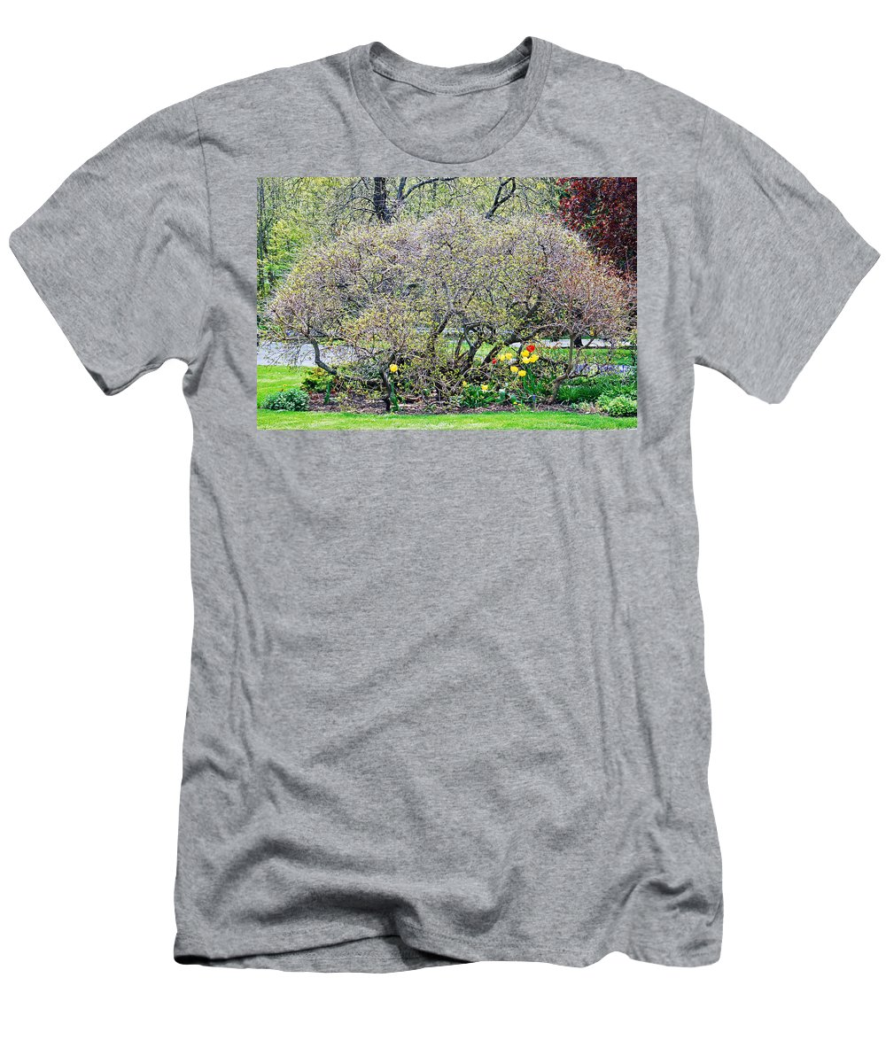Spring Men's T-Shirt (Athletic Fit) featuring the photograph Serenity View by Aimee L Maher ALM GALLERY
