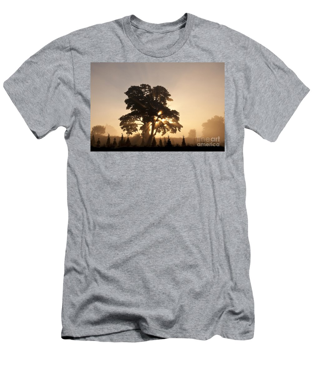 Beautiful Men's T-Shirt (Athletic Fit) featuring the photograph Silhouetted Tree With Sun Rays by Jim Corwin