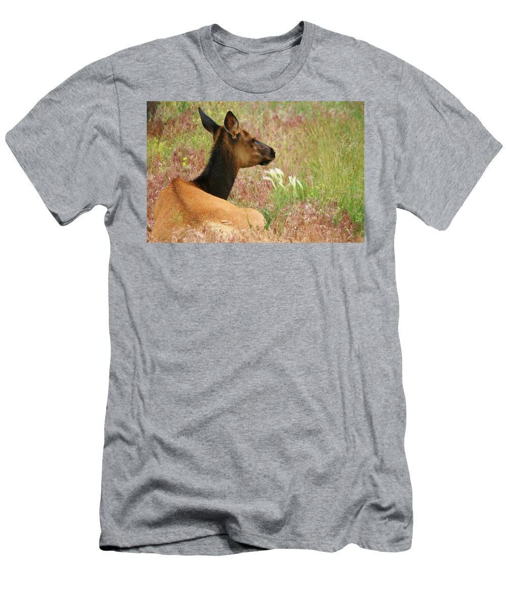 Elk Men's T-Shirt (Athletic Fit) featuring the photograph Simply Summer by Karen Jones