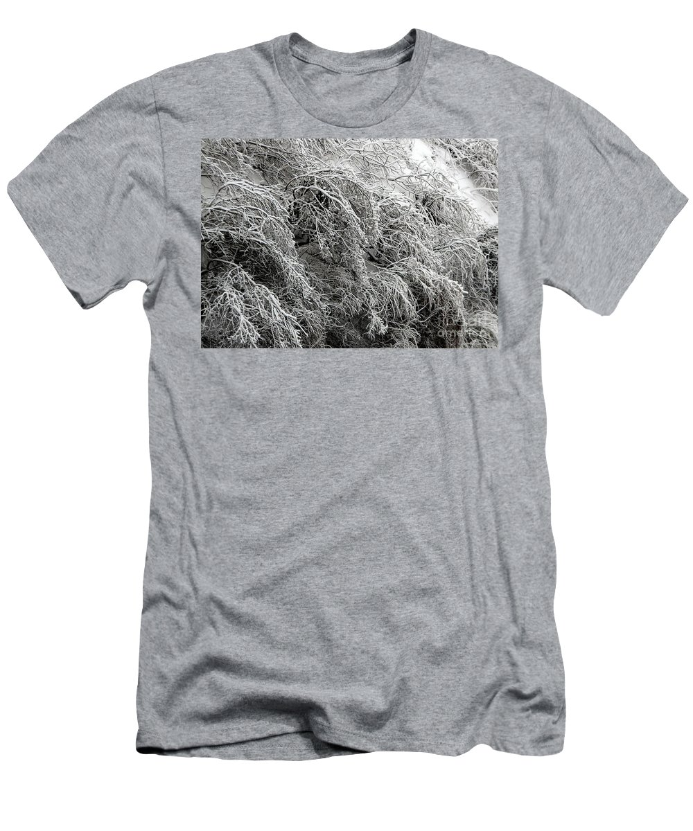 Ice Covered Trees Men's T-Shirt (Athletic Fit) featuring the photograph Snow And Ice Covered Trees At The Base Of Niagara Falls by Rose Santuci-Sofranko
