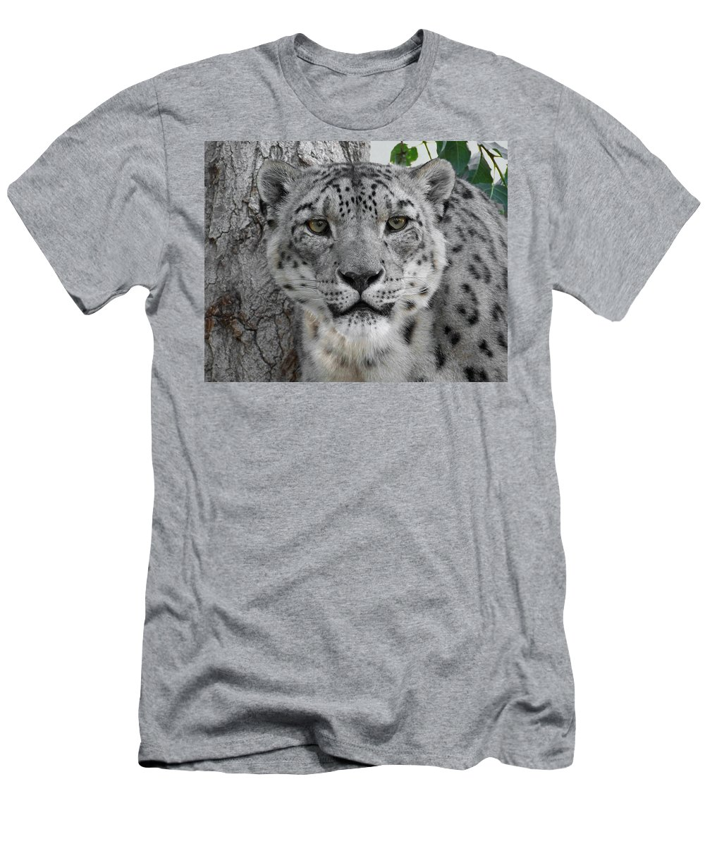 Animals Men's T-Shirt (Athletic Fit) featuring the photograph Snow Leopard 5 by Ernie Echols