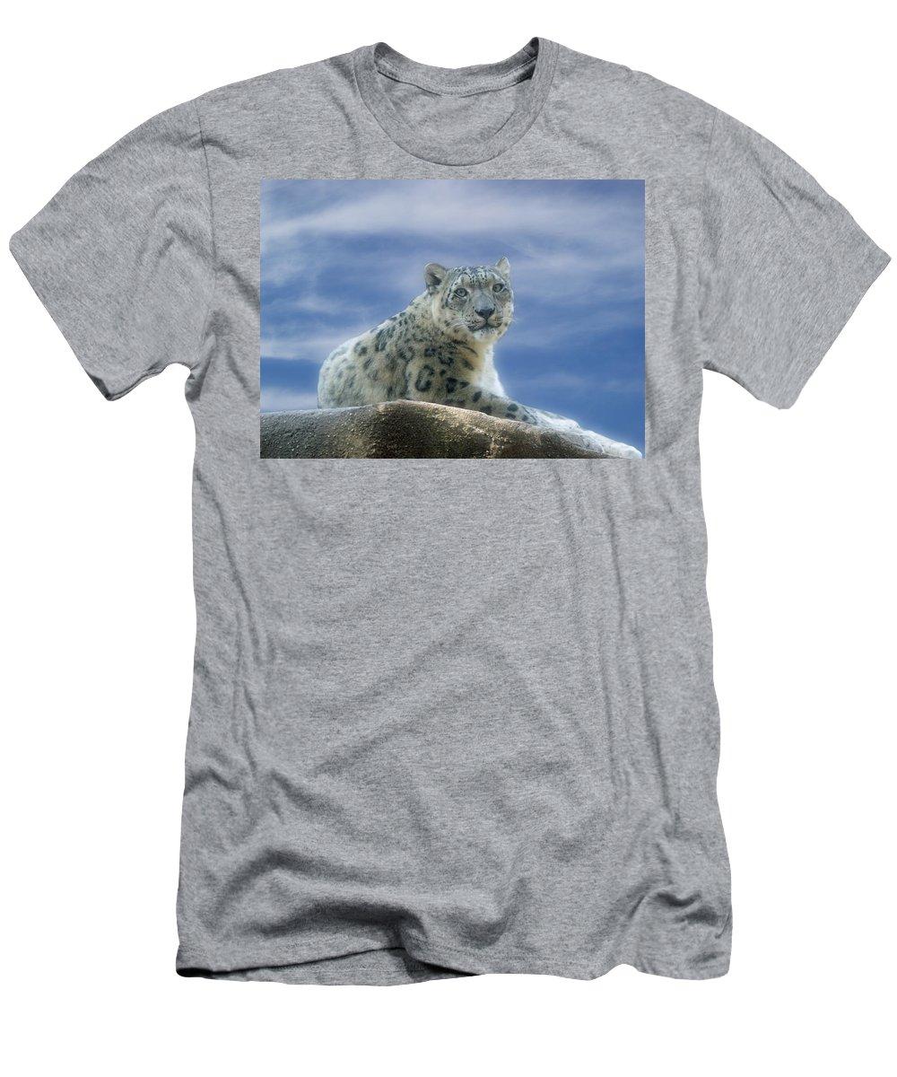 Snow Leopard Men's T-Shirt (Athletic Fit) featuring the photograph Snow Leopard by Sandy Keeton