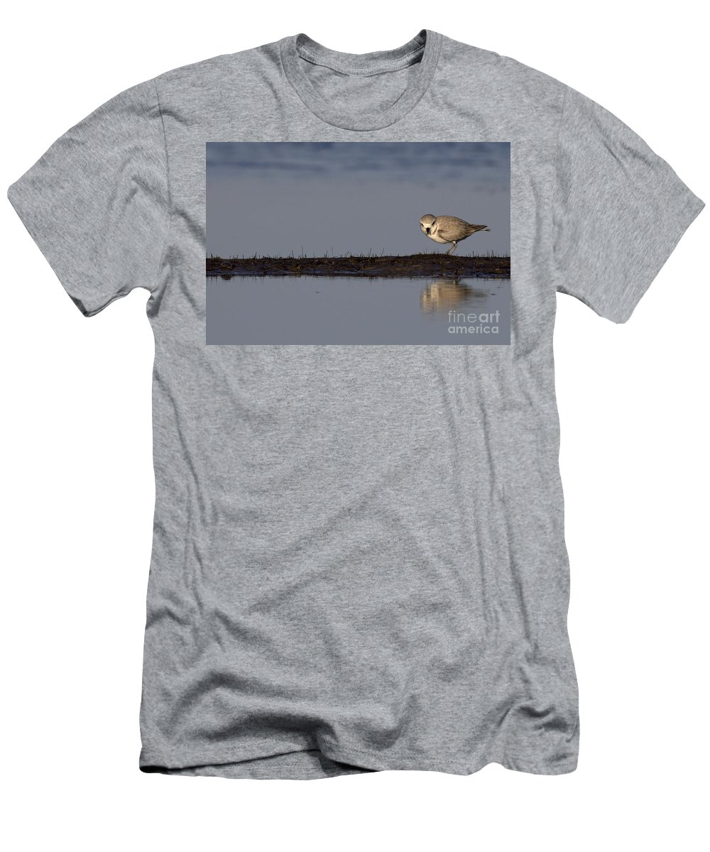 Snowy Plover Men's T-Shirt (Athletic Fit) featuring the photograph Snowy Plover On A Sandbar by Meg Rousher