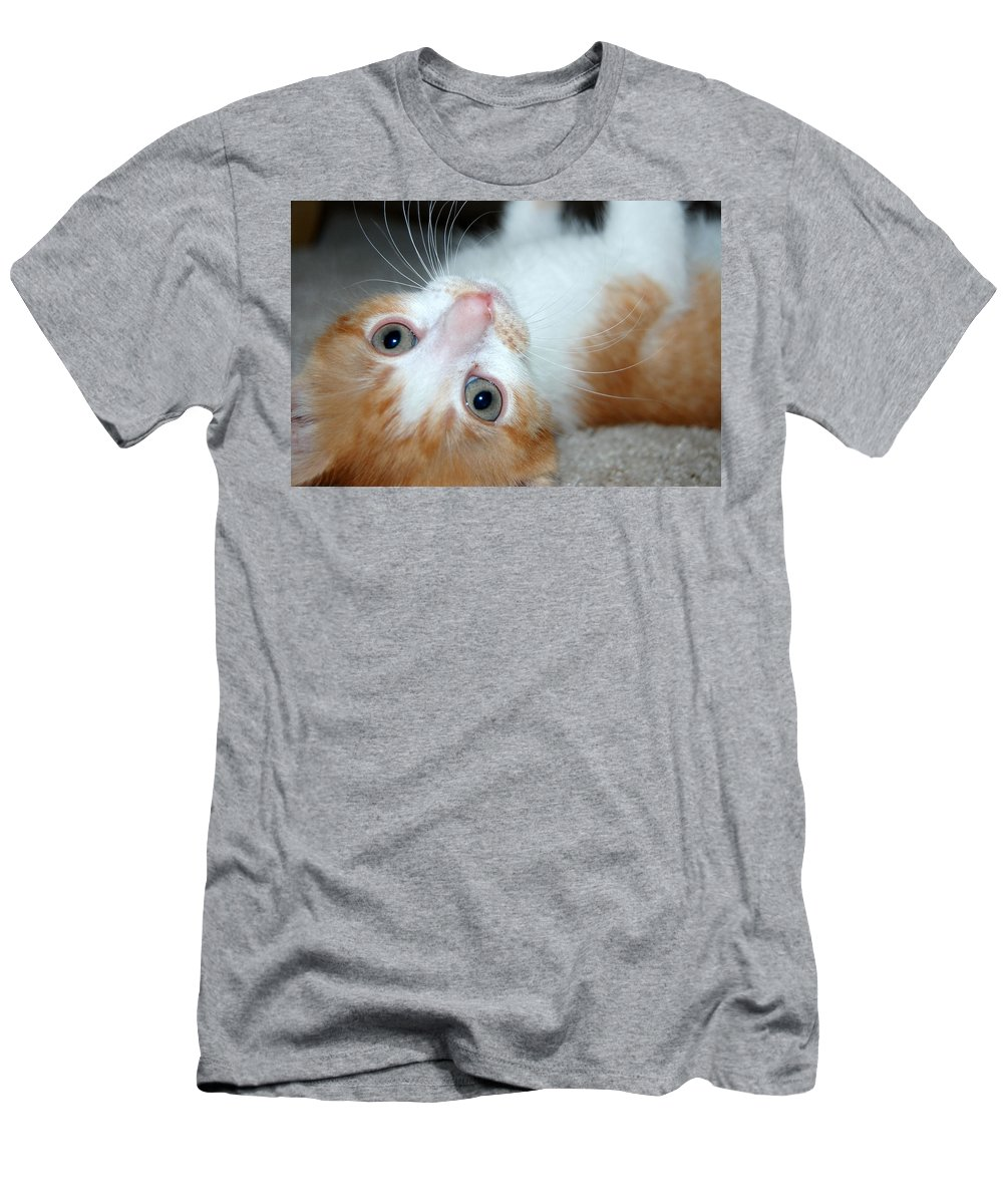Kitten Men's T-Shirt (Athletic Fit) featuring the photograph Spankie by Holly Blunkall