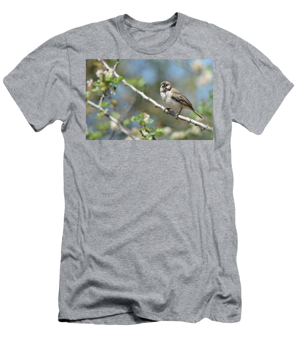 Oldupai Gorge Men's T-Shirt (Athletic Fit) featuring the photograph Speckled by Ian Ashbaugh