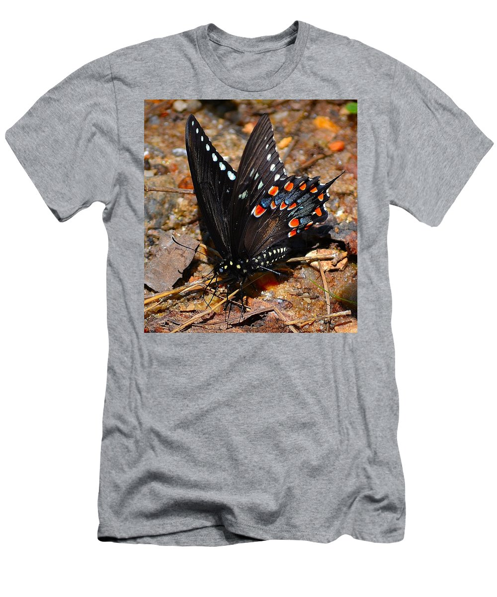 Spicebush Men's T-Shirt (Athletic Fit) featuring the photograph Spicebush Swallowtail Butterfly Preflight by Tara Potts