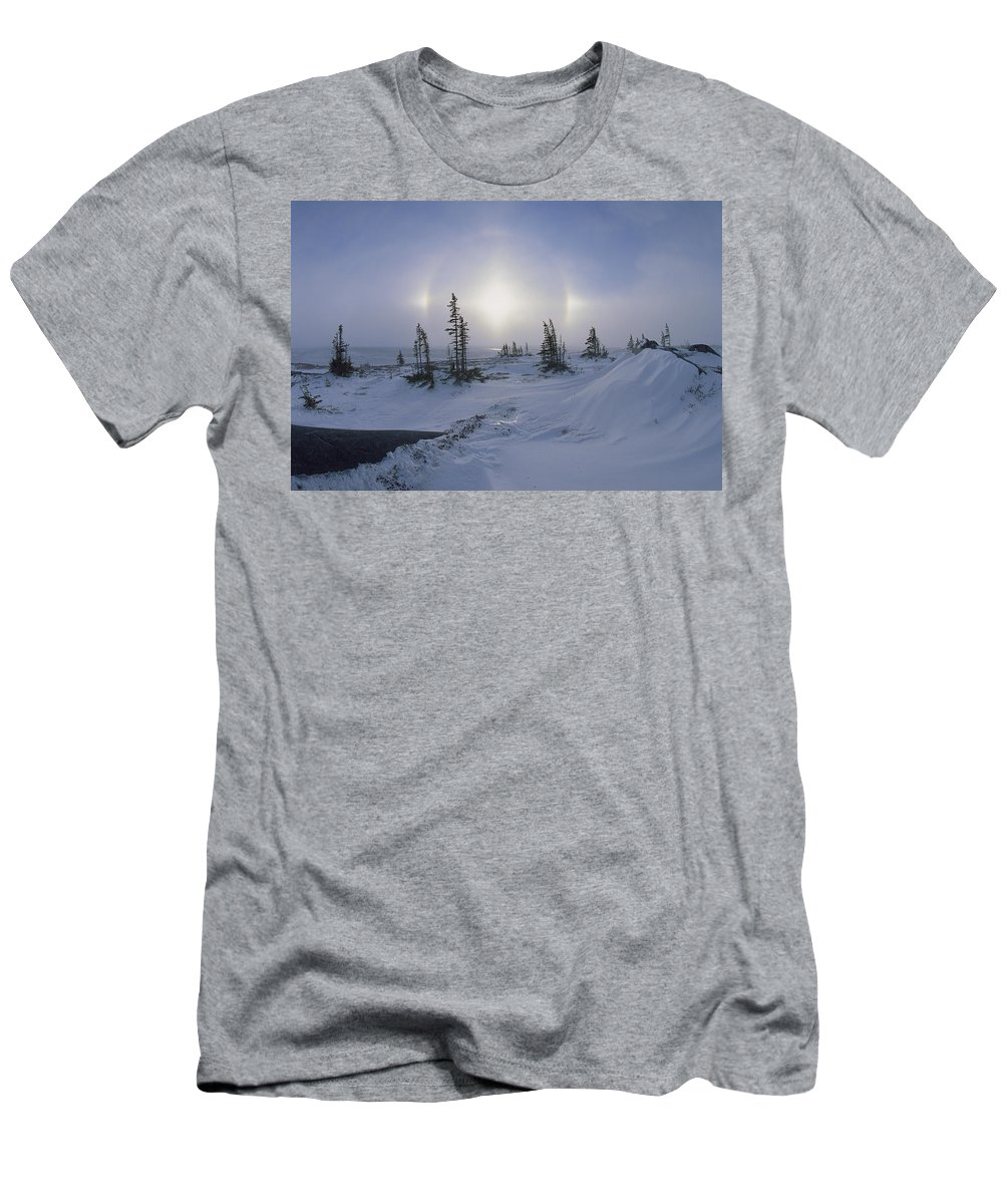 Feb0514 Men's T-Shirt (Athletic Fit) featuring the photograph Spruce Forest With Sundogs Hudson Bay by Konrad Wothe