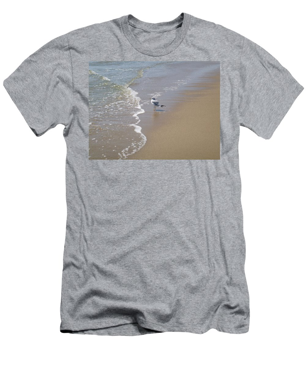 Seagull Men's T-Shirt (Athletic Fit) featuring the photograph Summer Day Of A Gull 2 by Ellen Paull